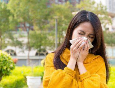 alergia de sezon